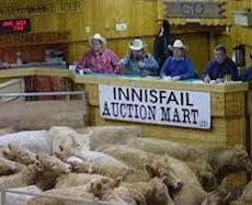 Innisfail-Auction-Market.jpeg